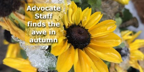 The Advocate Staff finds the awe in autumn