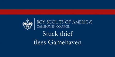 Stuck thief flees Gamehaven