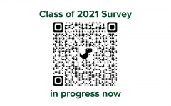 Seniors: complete the Counseling Department survey
